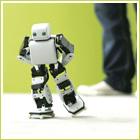 Roboten Plen